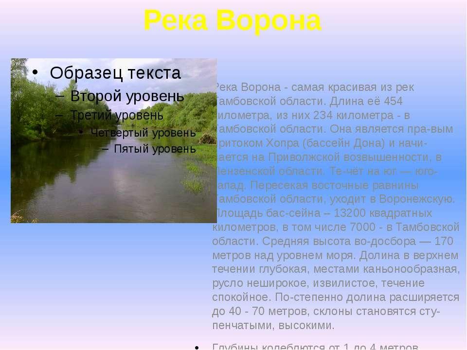 Река Ворона Река Ворона - самая красивая из рек Тамбовской области. Длина её ...