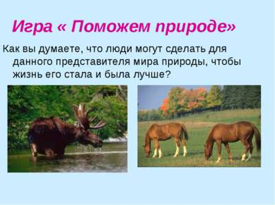 Игра « Поможем природе» Как вы думаете, что люди могут сделать для данного пр...