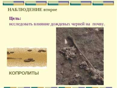 Цель: исследовать влияние дождевых червей на почву. НАБЛЮДЕНИЕ второе КОПРОЛИТЫ