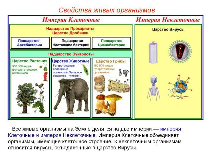 Все живые организмы на Земле делятся на две империи — империя Клеточные и имп...