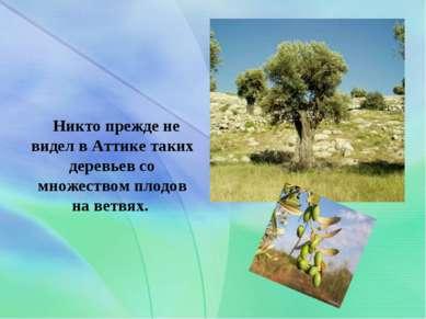 . Никто прежде не видел в Аттике таких деревьев со множеством плодов на ветвях.