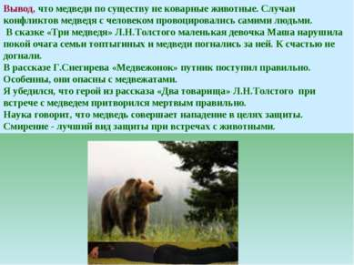 Вывод, что медведи по существу не коварные животные. Случаи конфликтов медвед...