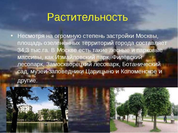 Растительность Несмотря на огромную степень застройки Москвы, площадь озеленё...
