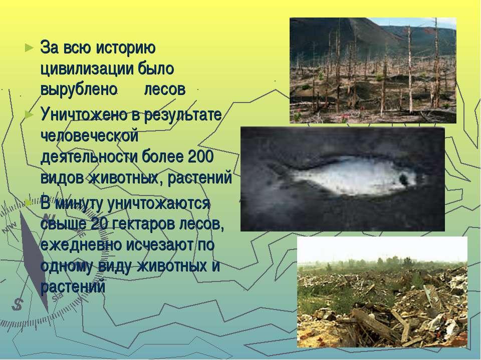 За всю историю цивилизации было вырублено ⅔ лесов Уничтожено в результате чел...