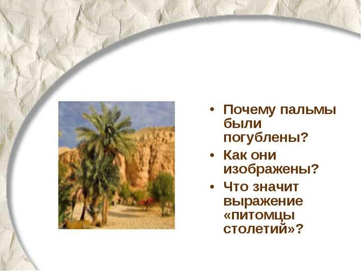 Почему пальмы были погублены? Как они изображены? Что значит выражение «питом...