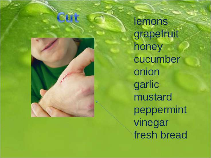 lemons grapefruit honey cucumber onion garlic mustard peppermint vinegar fres...