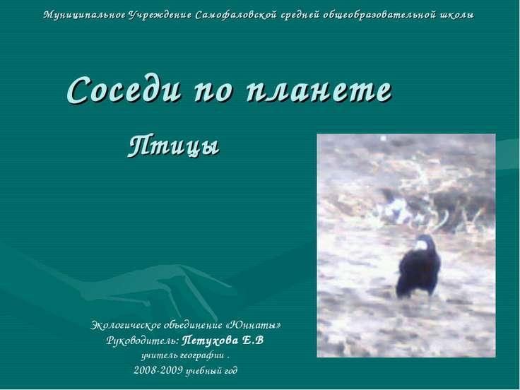 Муниципальное Учреждение Самофаловской средней общеобразовательной школы Сосе...