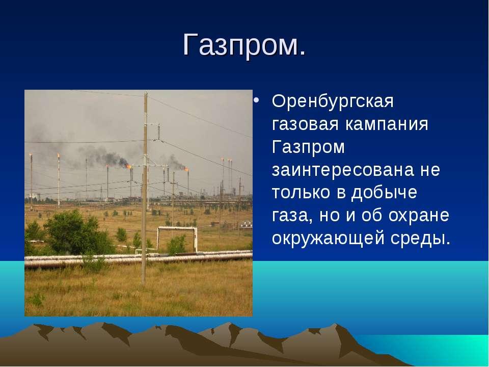 Газпром. Оренбургская газовая кампания Газпром заинтересована не только в доб...