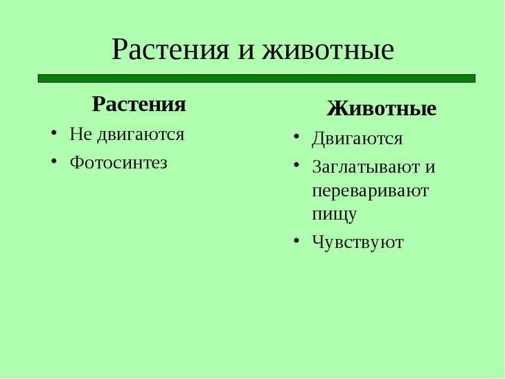 Растения и животные Растения Не двигаются Фотосинтез Животные Двигаются Загла...