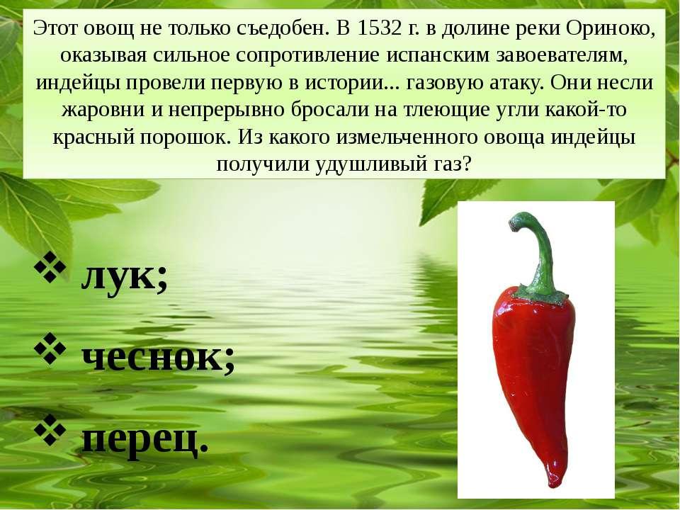 Этот овощ не только съедобен. В 1532 г. в долине реки Ориноко, оказывая сильн...
