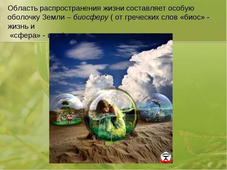 Область распространения жизни составляет особую оболочку Земли – биосферу ( о...