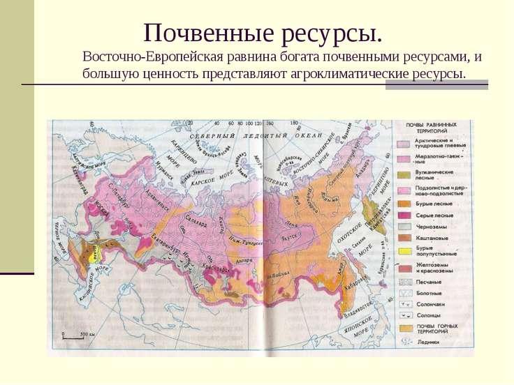 Почвенные ресурсы. Восточно-Европейская равнина богата почвенными ресурсами, ...