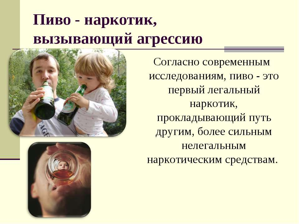 Пиво - наркотик, вызывающий агрессию Согласно современным исследованиям, пиво...