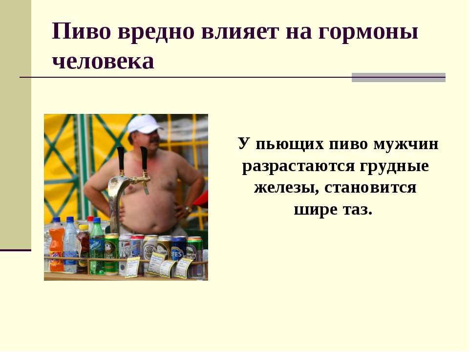 Пиво вредно влияет на гормоны человека У пьющих пиво мужчин разрастаются груд...