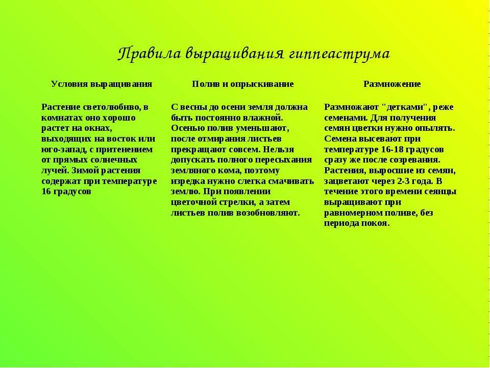 Правила выращивания гиппеаструма Условия выращивания Полив и опрыскивание Раз...