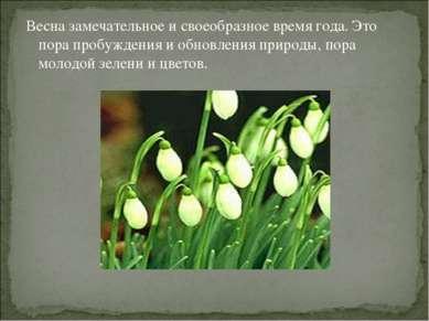 Весна замечательное и своеобразное время года. Это пора пробуждения и обновле...