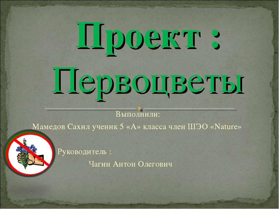 Выполнили: Мамедов Сахил ученик 5 «А» класса член ШЭО «Nature» Руководитель :...
