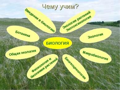 Чему учим? БИОЛОГИЯ Введение в биологию Физиология и биохимия растений Биогео...