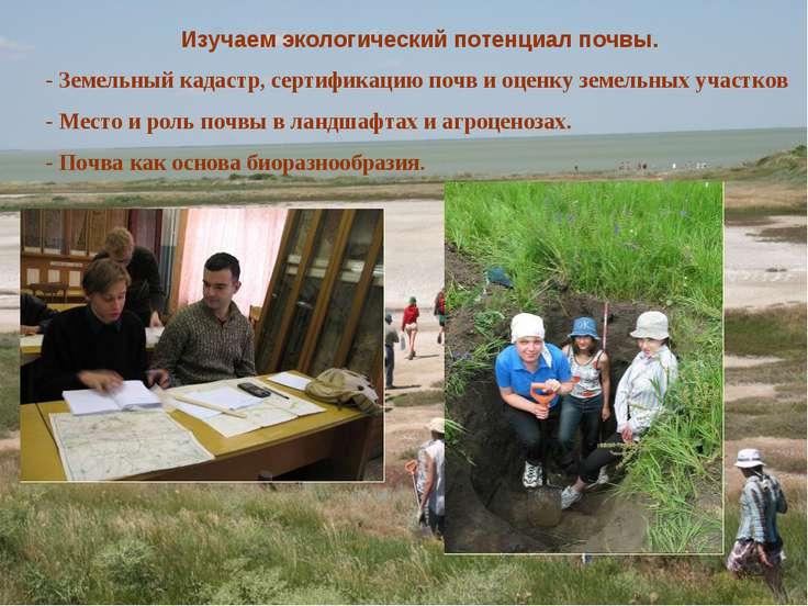 Изучаем экологический потенциал почвы. - Земельный кадастр, сертификацию почв...