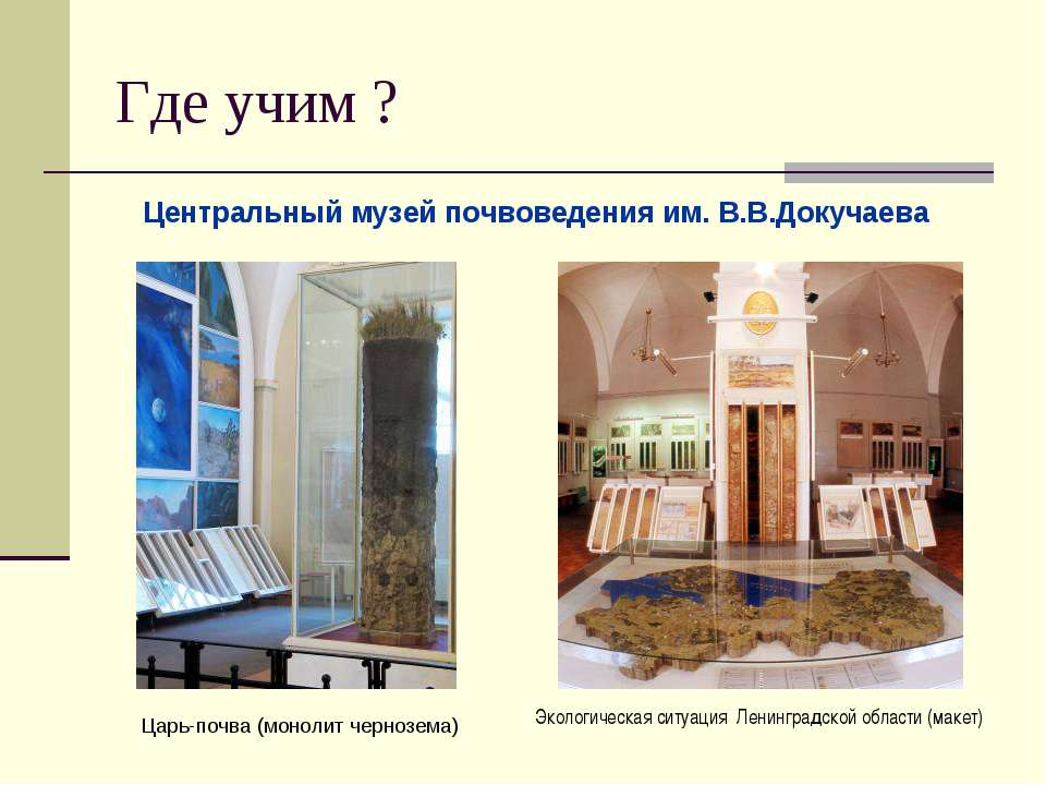 Где учим ? Центральный музей почвоведения им. В.В.Докучаева Экологическая сит...