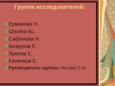 Группа исследователей: Ермакова Н. Шагина Кс. Сафонова Н. Безруков Е. Хренов ...