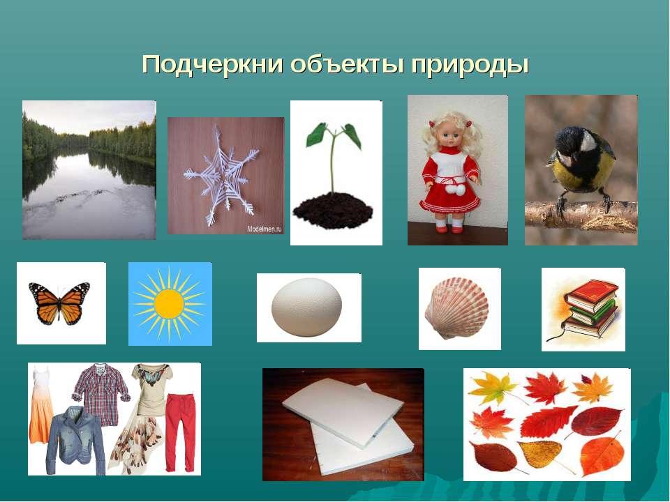 Подчеркни объекты природы