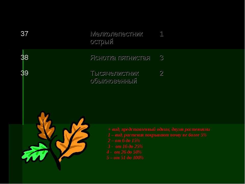 + вид, представленный одним, двумя растениями 1 – вид, растения покрывают поч...