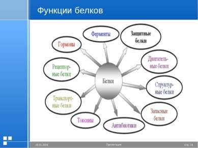 Функции белков Стр. * 20.01.2006 Презентация