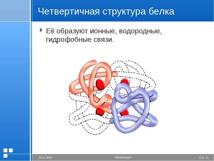 Четвертичная структура белка Её образуют ионные, водородные, гидрофобные связ...