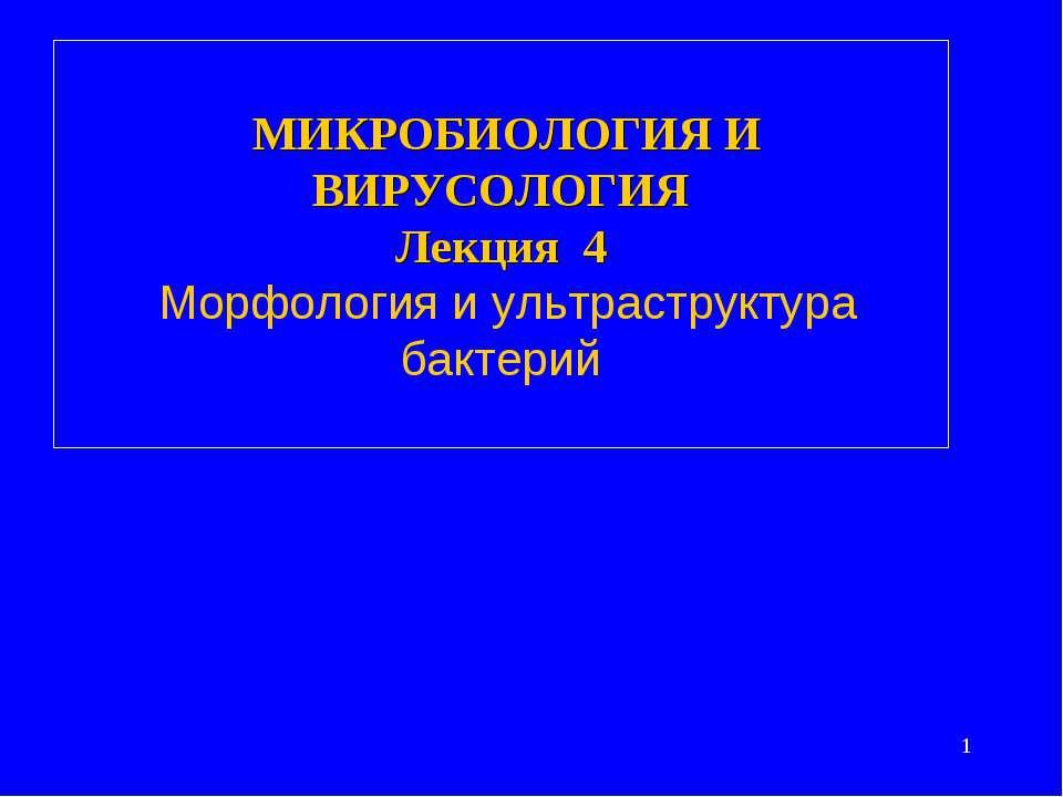 МИКРОБИОЛОГИЯ И ВИРУСОЛОГИЯ Лекция 4 Морфология и ультраструктура бактерий