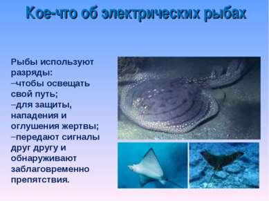 Рыбы используют разряды: чтобы освещать свой путь; для защиты, нападения и ог...