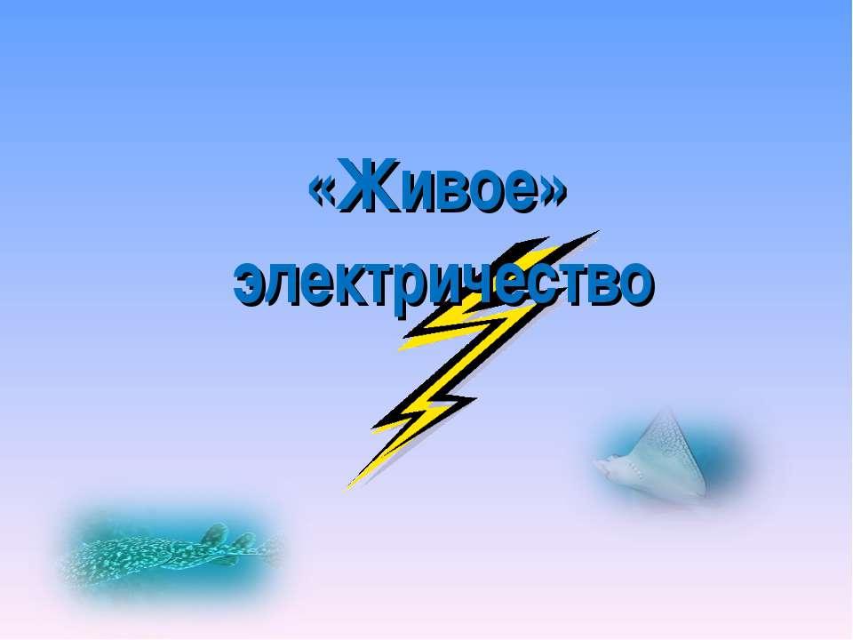«Живое» электричество