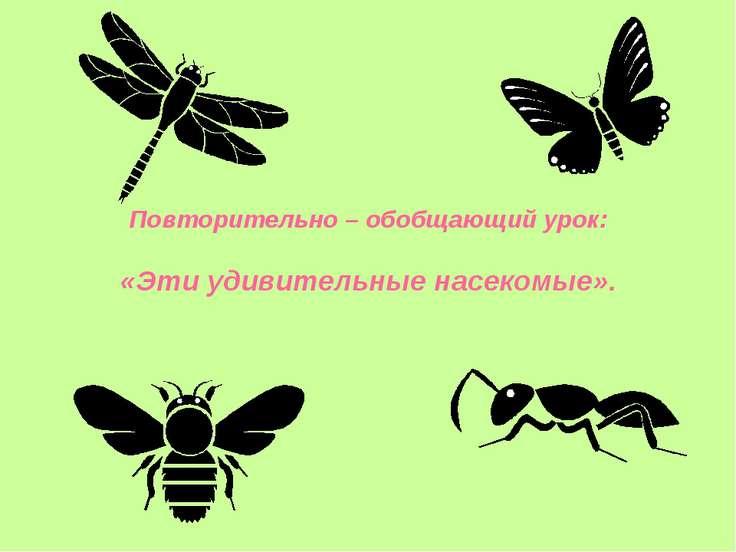 Повторительно – обобщающий урок: «Эти удивительные насекомые».