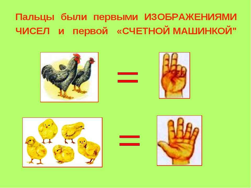 """Пальцы были первыми ИЗОБРАЖЕНИЯМИ ЧИСЕЛ и первой «СЧЕТНОЙ МАШИНКОЙ"""""""