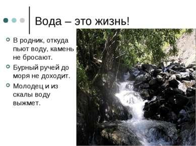Вода – это жизнь! В родник, откуда пьют воду, камень не бросают. Бурный ручей...