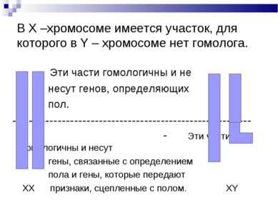 В Х –хромосоме имеется участок, для которого в Y – хромосоме нет гомолога. Эт...