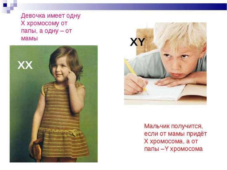 Мальчик получится, если от мамы придёт Х хромосома, а от папы –Y хромосома ХХ...