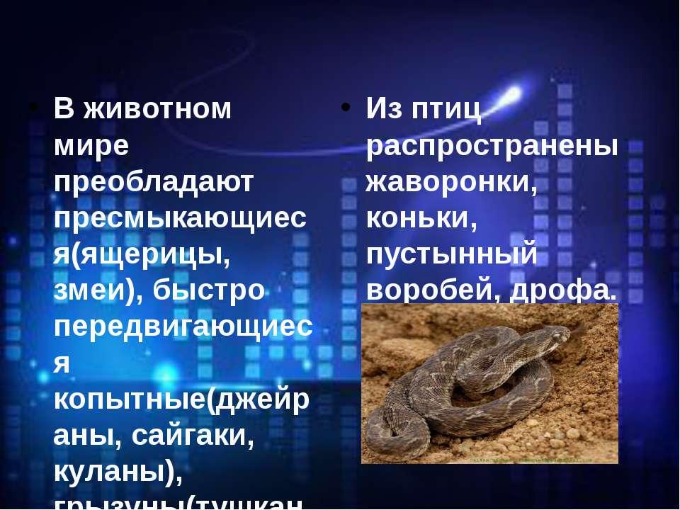 В животном мире преобладают пресмыкающиеся(ящерицы, змеи), быстро передвигающ...