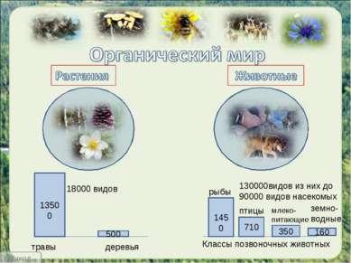 18000 видов 130000видов из них до 90000 видов насекомых 1450 710 350 160 Клас...