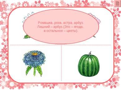 Ромашка, роза, астра, арбуз. Лишний – арбуз.(Это – ягода, а остальное – цветы).