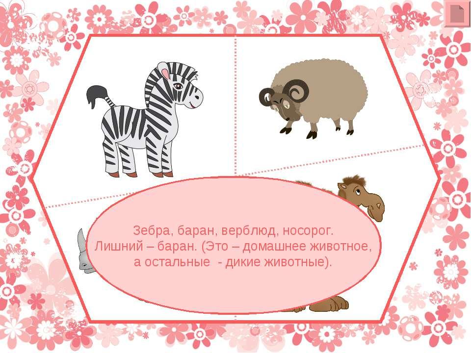 Зебра, баран, верблюд, носорог. Лишний – баран. (Это – домашнее животное, а о...