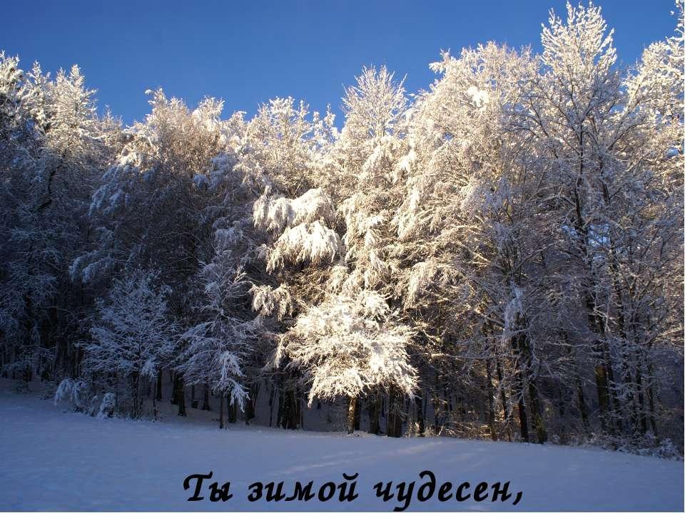Ты зимой чудесен,