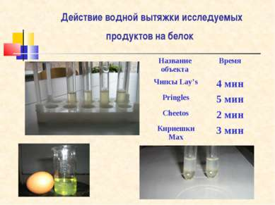 Действие водной вытяжки исследуемых продуктов на белок Название объекта Время...
