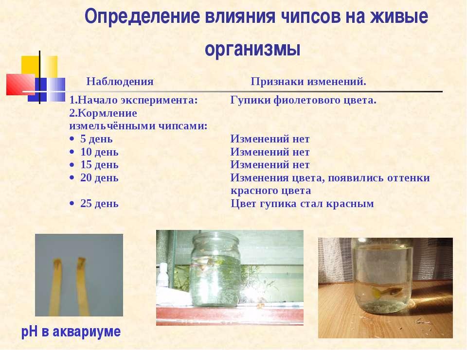 Определение влияния чипсов на живые организмы рН в аквариуме Наблюдения Призн...