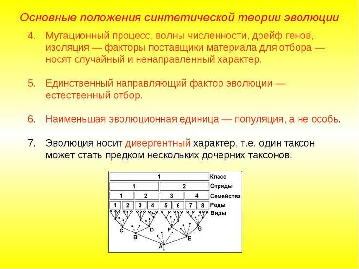 Основные положения синтетической теории эволюции Мутационный процесс, волны ч...