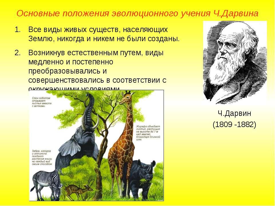 Основные положения эволюционного учения Ч.Дарвина Ч.Дарвин (1809 -1882) Все в...