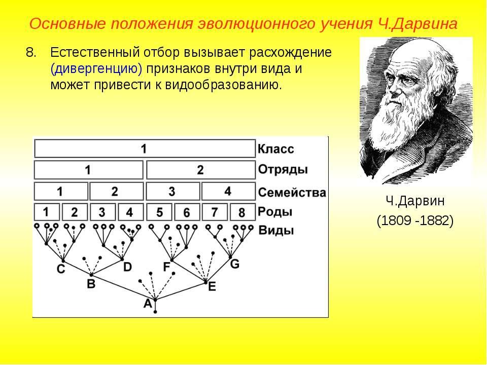 Основные положения эволюционного учения Ч.Дарвина Ч.Дарвин (1809 -1882) Естес...