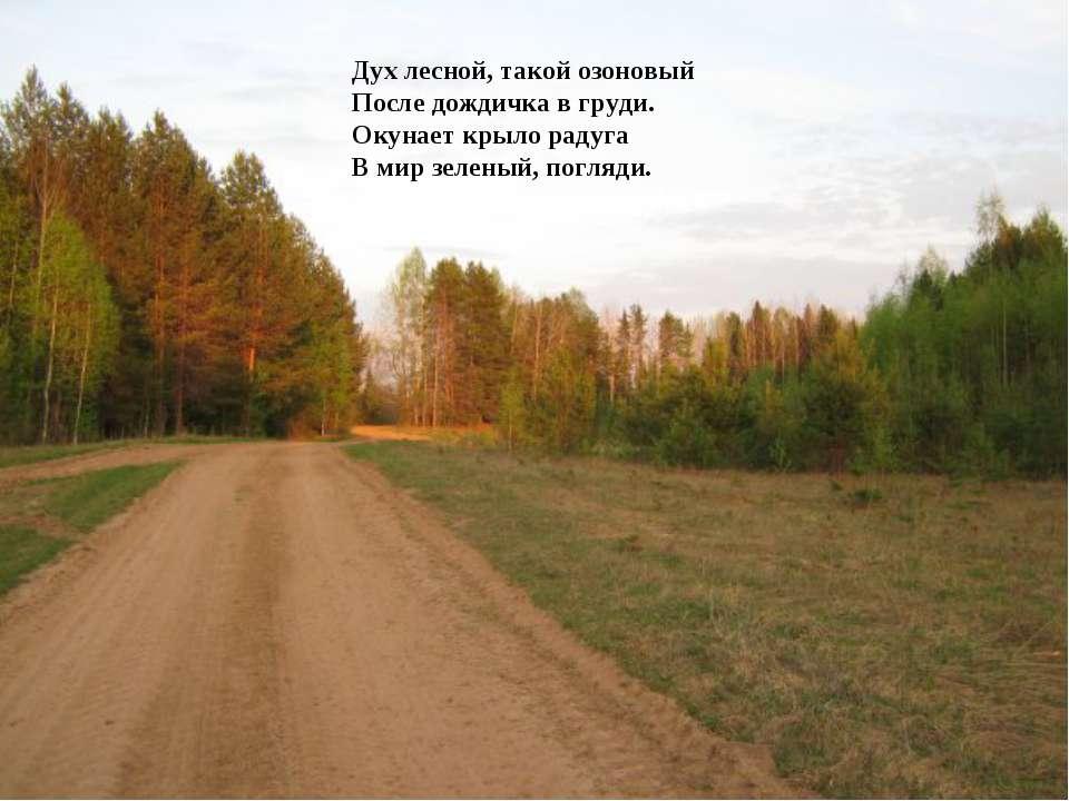 Дух лесной, такой озоновый После дождичка в груди. Окунает крыло радуга В мир...