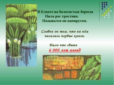 В Египте на болотистых берегах Нила рос тростник. Назывался он папирусом. Сла...
