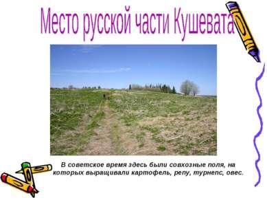 В советское время здесь были совхозные поля, на которых выращивали картофель,...